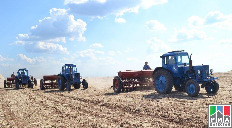 Аграрии Дагестана провели яровой сев наплощади свыше 65 тыс. гектаров