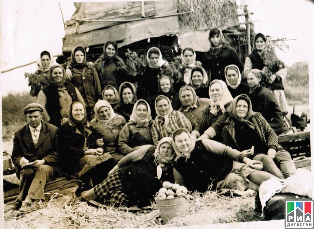 Район попас дагестан 1942 год
