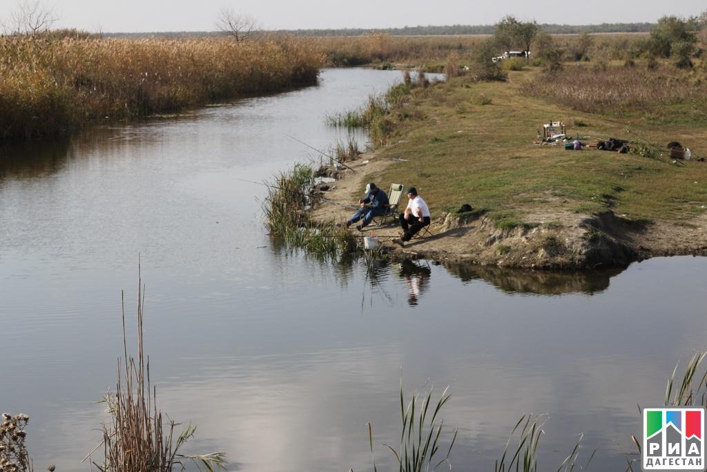 Фестиваль-конкурс «Хороша уха любая!» проведут коДню рыбака вКизлярском районе