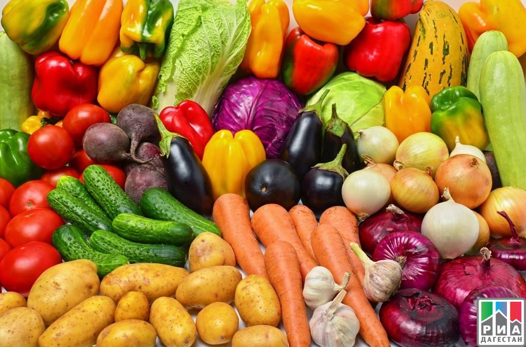Дагестанские аграрии хотят собрать 142 тыс. тонн плодов