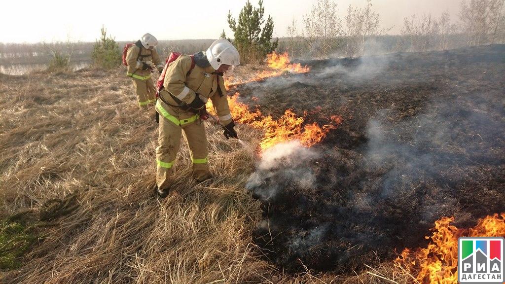 ВДагестане природный пожар уничтожил 10 тыс. гектаров пастбищ