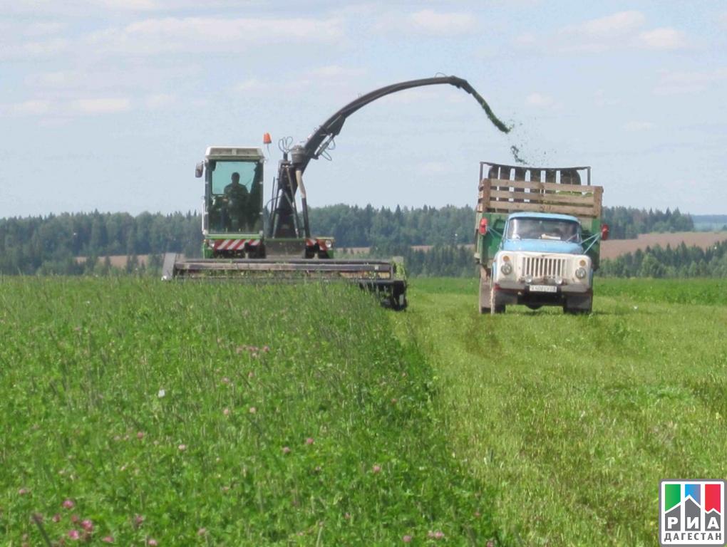 Украинские аграрии намолотили 1-ый млн. тонн подсолнечника