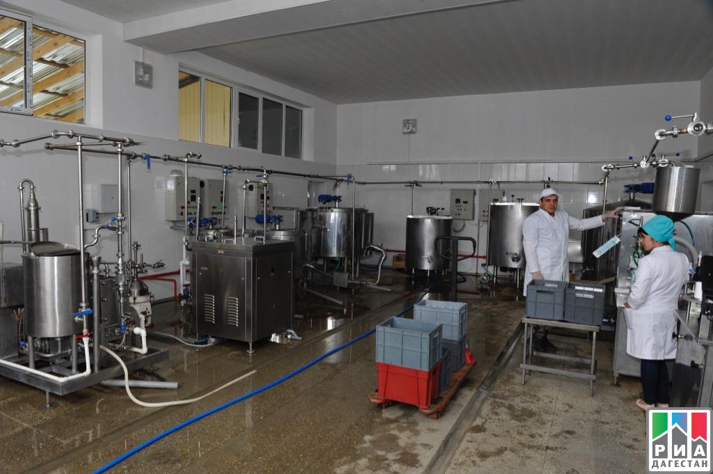 ВДагестане запустили цех попереработке молока вООО«Кизляр Урицкий мясокомбинат»