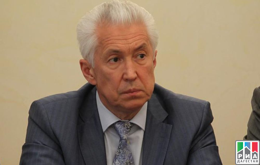 Владимир Васильев поручил навести порядок натаможне