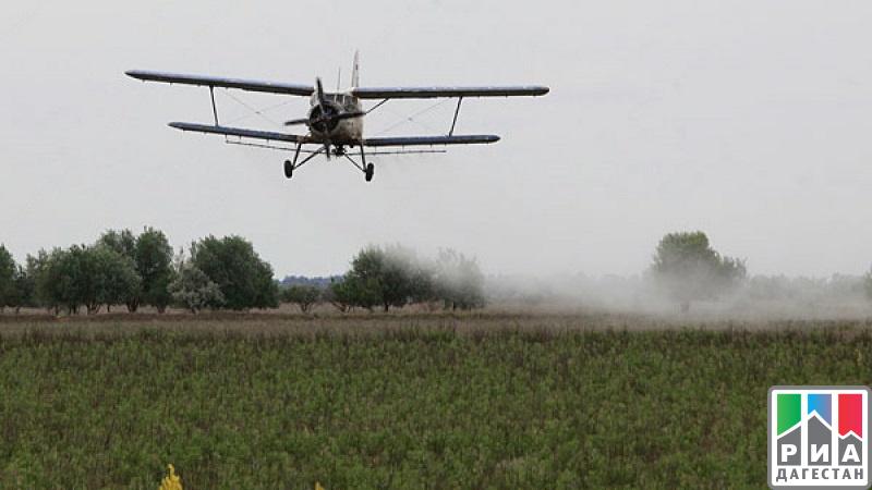 Неменее 20 тыс. гектаров сельхозугодий Дагестана освобождены отсаранчи