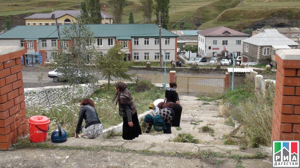 Омичи примут участие в экологическом субботнике «Зелёная Россия».