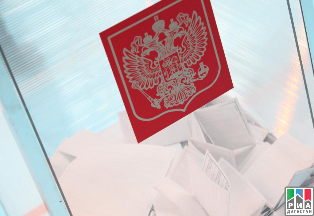 Социальные наблюдатели проследят завыборами президента вВоронежской области