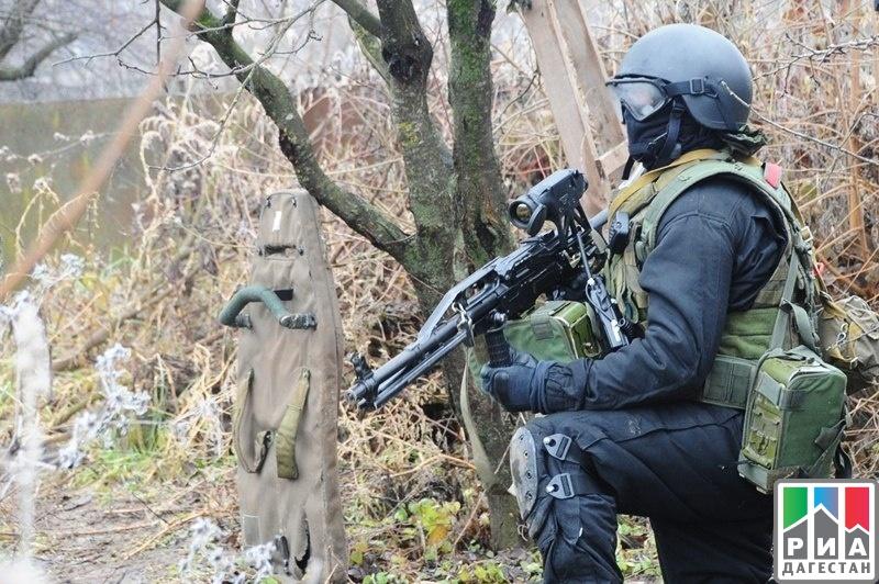 ВШамильском районе Дагестана ликвидированы двое боевиков