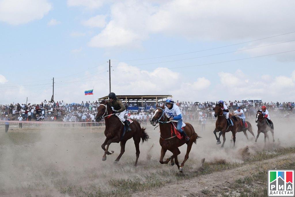 Чемпионат Дагестана по общенациональным видам спорта прошел вЛевашинском районе